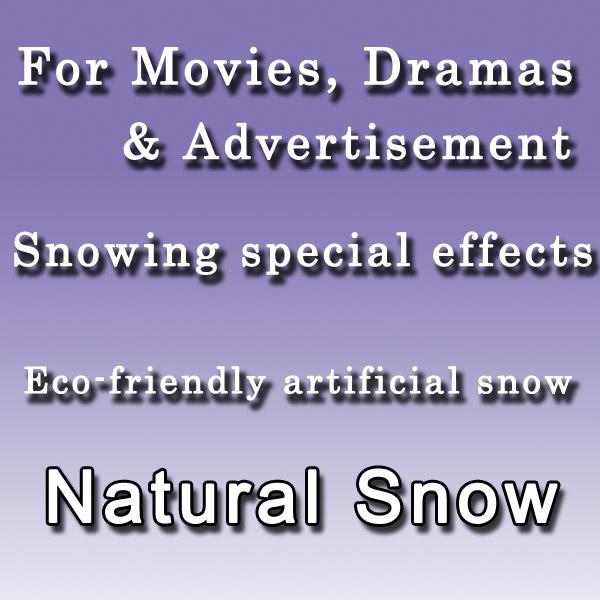snowcfe
